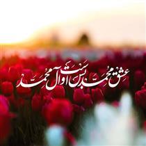 جایگاه ویژه حضرت محمد (ص) در قرآن