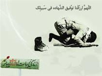 خاطراتی سبز از یاد شهیدان