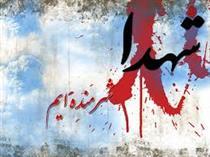 زندگینامه و خاطرات شهید مصطفی ردانی پور