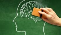 چرا به آلزایمر مبتلا میشویم و چگونه باید با آن مقابله کنیم؟