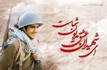 خاطرات شهید سید حمید میر افضلی